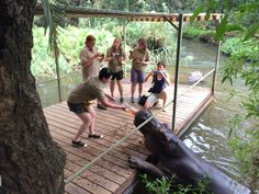Live, learn & conserve. Wildlife Conservation Experience at HESC. #conservation #experience #wildlife #makeadifference