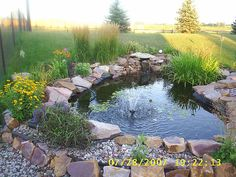 outdoor pond - Google Search