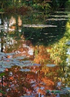 Claude Monet's Water Garden in Giverny, Autumn Reflections - Photo Ariane Cauderlier   Monet's own garden at his estate at Giverny, France.  Claude Monet spent the last 30 years of his life here, painting his own gardens.