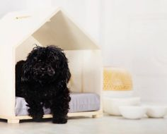 Modern Dog Houses and Pet Dens from Full Loft