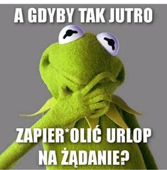 A gdyby tak jutro. Weekend Humor, Belly Laughs, Man Humor, Mood Quotes, Sarcasm, Quotations, Haha, Dinosaur Stuffed Animal, Funny Memes
