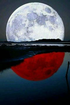Thanks for visiting Beautiful Mother Nature. Moon Photos, Moon Pictures, Moon Pics, Beautiful Moon, Beautiful World, Stars Night, Shoot The Moon, Sun Moon Stars, Moon Magic