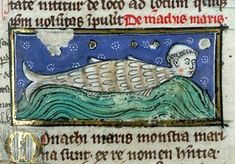 thomas-of-cantimprc3a9-liber-de-natura-rerum-france-ca-1290-valenciennes-bibliothc3a8que-municipale-ms-320-fol-117r.jpg (402×280)