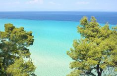 Chalkidiki features rich scenery and stunning beaches! It is one of the most touristy areas in northern Greece. Definitely, you should add this amazing destination to your bucket list! Halkidiki Greece, Amazing Places On Earth, Turquoise Water, Thessaloniki, Lush Green, Amazing Destinations, The Locals, Places Ive Been, The Good Place