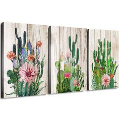 Cactus Decor Bathroom Canvas Prints Wall Art Green Tropical Desert Fleshy Plant Watercolor Paintings Hand Painted on Wooden Board Set of Three 12 x 16 3 Pieces Framed Pictures Spiny Pink Flower Cactus Painting, Cactus Wall Art, Cactus Cactus, Wall Art Decor, Wall Art Prints, Poster Prints, Canvas Prints, Watercolor Plants, Watercolor Paintings