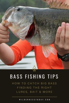Fishing Tips: How to Catch Big Bass Guide] Learn how to catch big bass with our fishing tips, gear recommendations and more.Learn how to catch big bass with our fishing tips, gear recommendations and more. Fishing Basics, Bass Fishing Tips, Gone Fishing, Best Fishing, Trout Fishing, Kayak Fishing, Fishing Stuff, Fishing Knots, Fishing Tricks