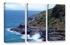 'Sea Cave and Nesting Birds' by Frank Wilson 3 Piece Photographic Print on Wrapped Canvas Set