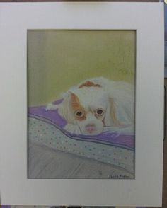 Pastel pencil painting of Pippa, our frequent house guest | docrafts.com