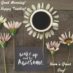 Good Morning! Happy Tuesday! Wake Up and Be Awesome! Have a Great Day! #goodmorning #goodmorningpost #post #good #morning #morningpost #posts #gm #gmw #coffee #tuesdaymorning #tuesday #tuesdaymemes #riseup #wakeup #others #motivateme #awesome #morningmotivation #happy #motivate #motivation #motivated #grind #thegrind #inspire #morninggrind #quotes #quote #meme #memes #memesdaily #inspiration #inspirational