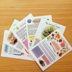 Studnice nápadů a informací pro vaše zahrady - to je soubor kartiček,které se dotýkají různých zahradních témat a problémů.