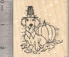 Thanksgiving Dachshund Rubber Stamp, Weiner Dog Pilgrim with Pumpkin  J22901 WM
