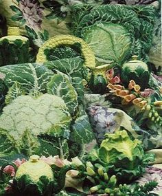 Kaffe Fassett needlepoint designs, cauliflower and cabbage. Playing with scale and color. Cauliflower never looked so good.