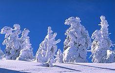 L'inverno è la mia stagione preferita!