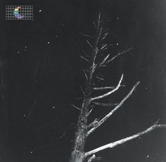 Peter Broderick • (Colours Of The Night) Satellite [EP]