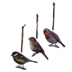 Set of Three Ceramic Bird Print Hanging Decorations Garden Ornaments, Hanging Ornaments, Hanging Decorations, Tesco Direct, Ceramic Birds, Bird Prints, Christmas Decorations, Ceramics, Animals