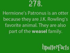Harry Potter Facts #278:    Hermione's Patronus is an otter because they are J.K. Rowling's favorite animan.  They are also part of the weasel family.
