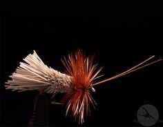 Goddard Caddis: Et klassisk tørrfluemønster med lang fartstid bak seg. http://fluefiskefluer.no/dagens-flue-goddard-caddis/