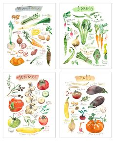 "Set of four vegetable prints - Four seasons Archival giclee reproduction prints from my watercolor illustrations. This seasonal fruits set is printed on fine art "" BFK Rives "" paper, smooth texture, a"