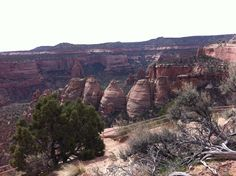 Colorado National Monument Park... Hunted for arrowheads with my family nearly every year.
