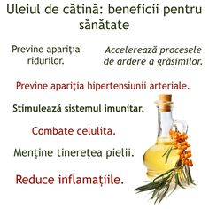 Uleiul de catina: medicamentul de mii de ani Remedies, Health Fitness, Food And Drink, Healthy Recipes, Vegan, Tips, Diet, The Body, Interview
