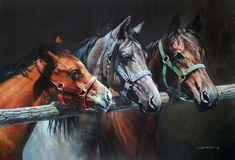 Three Pals Limited Edition Horse Print by Equestrian Artist Judi Kent Pyrah
