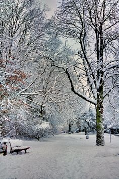 Winter Scenery No.3 by *doomed-forever on deviantART