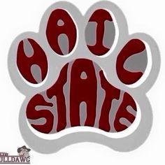 Ohio Buckeyes, Mississippi State Bulldogs, Auburn Tigers, Southern Belle, College Football, State University, Football Season, Football Team, House Divided
