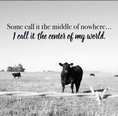 Love of the country farm life~ Cow Quotes, Farm Quotes, Country Girl Quotes, Horse Quotes, Country Girls, Country Living Quotes, Smile Quotes, Country Music, Beach Quotes
