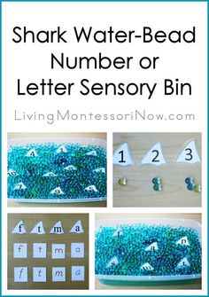 """Shark water-bead sensory bin with shark-fin numbers or letters and """"swimming"""" sharks - for teaching counting or addition and phonetic sounds"""