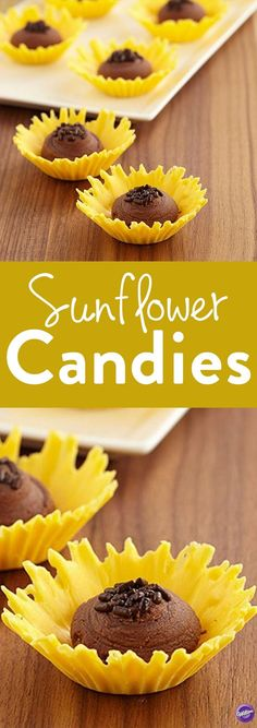 How to Make Sweet Sunflower Candies - These candy treats are made by forming cute little candy cups with Candy Melts candy. They're then filled with whipped chocolate ganache for a decadent treat. Per(Chocolate Ganache Truffles) Chocolate Fondant, Whipped Chocolate Ganache, Chocolate Candies, Dessert Chocolate, Chocolate Chocolate, Paletas Chocolate, Chocolate Strawberries, Candy Melts, Chocolates