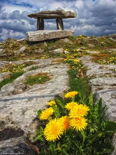 The beauty of The Burren and Poulnabrone Dolmen on Ireland's