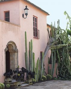 Pale pink stucco building with arid cacti garden  in Montecito, CA.  Not Arizona but same look.