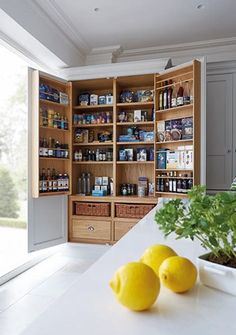 12 stylish and practical pantry ideas for your kitchen 12 Pantry Ideas – Larder Cupboard Ideas For Every Kitchen - Own Kitchen Pantry Kitchen Larder Cupboard, Kitchen Pantry Design, Kitchen Interior, Kitchen Storage, Pantry Storage, Pantry Organization, Kitchen Cabinets, Larder Cupboard Freestanding, Kitchen Island