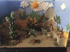 Desert diorama