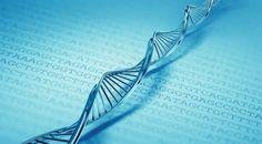 Harvard stores data on DNA! 700 terabytes on a single gram of DNA...