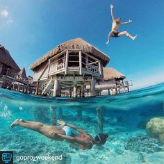 📸 from @gopro_weekend * * 👕 If you would like to have a t-shirt for your self or a 🎁gift for someone special😘, please click on the link in my bio (profil) and check all collection * * ☺ Double tap & Tag a Friend below⤵😘 * * * #diving #scubadiving #snorkeling #underwather #freediving #freedive #cruise #leonardo- dicaprio #hobby #vacations #redsea  #Scuba #luxurylifestylemagazine #luxurylife #turtle #seaturtle #shark #bodylanguage_bnc#jaw_dropping_shots#saltnomads #spear_fishing…