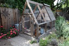 Amelia Naim-Hansen has four chickens that live in her specially designed A-frame coop. Naim-Hansen is participating in her second Tour de Cl...