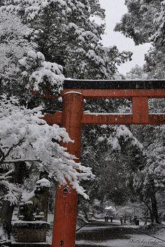 Temple gates in winter bliss: Todai-ji temple, Nara, #Japan