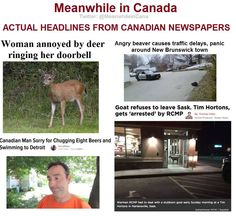 Yes, this is real. - Meanwhile in Canada