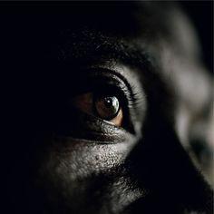 Untitled, Liberia, 2003-2007.  Photo by Tim Hetherington