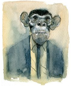 1000+ images about Monkey on Pinterest | Baby gorillas, Orangutans ...
