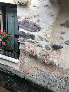 #pittoresco#paesaggio#borghettosulmincio#foto#fotografia#amodomio#amofotografar#hobbyfotografar