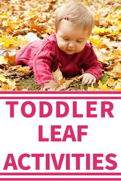 Toddler Fall Activities: Are you looking for fun outdoor play ideas for your toddler? Try these simple ideas using leaves to help your toddler learn and gain skills.
