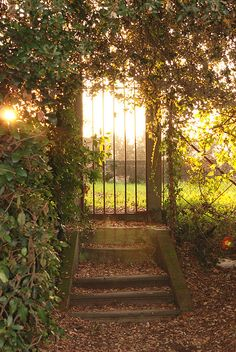 Secret garden, keep it safe Italy Vacation, Italy Travel, Places To Travel, Places To See, Toscana Italia, Places In Italy, Italian Garden, Felder, Tuscany Italy