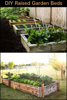 Build Your Own Raised Garden Bed And Improve The Experience of Growing Your Own Food