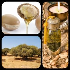 Ancient Beauty Secrets: How To Use Argan Oil Everyday Beauty Routine, Beauty Routines, Beauty Secrets, Beauty Hacks, Beauty Tips, Tanning Cream, Ancient Beauty, Moroccan Oil, Oil Uses