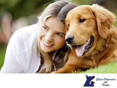 CLÍNICA VETERINARIA DEL BOSQUE. En Clínica Veterinaria del Bosque, contamos con excelentes programas de medicina preventiva como es la aplicación de vacunas para perros, gatos y hurones de los laboratorios más reconocidos y supervisamos toda la cadena fría, auditamos al proveedor y sus transportes, todo esto para que su mascota se encuentre en perfectas condiciones. Te recomendamos comunicarte con nosotros a los teléfonos 5360-3311 y 5240-0404 para que podamos orientarte.  #veterinaria