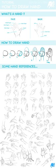Hands are soooo hard to draw. This is really helpful!!