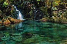 Opal Creek Pool, Oregon.