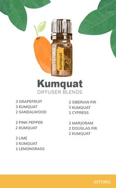 Kumquat essential oil offers many effective health benefits. Discover these benefits by diffusing this uplifting oil. Doterra Diffuser, Essential Oil Diffuser Blends, Essential Oil Uses, Doterra Essential Oils, Reiki, Perfume, Natural, Health Benefits, Diffuser